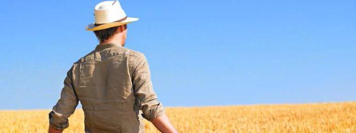 Ismea – Primo insediamento e Subentro in Agricoltura – Legge attiva