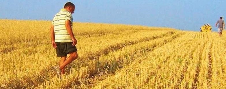 Primo insediamento 6.1, Regione Puglia: dal 5 Settembre il nuovo Bando.